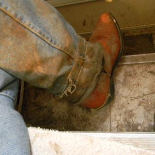 My wet muddy pants & Boots are now on the steps by the door where the dirt is easily swept outside.