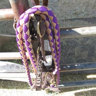 Close-up of my Triple E braided Nylon Lead.