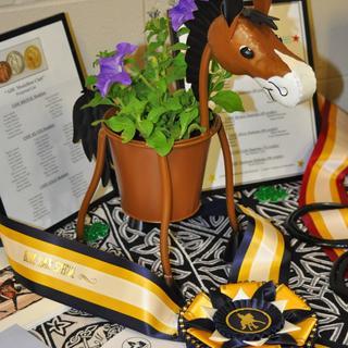Austin Dressage Unlimited (ADU) USDF Dressage Shows - High Point Awards