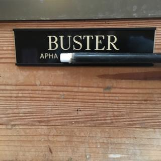 Great nameplate-I covered Buster's registered name with the end of a crop for privacy's sake.