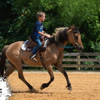 "We love this pad! Good quality, fit's my son's 12"" saddle great."