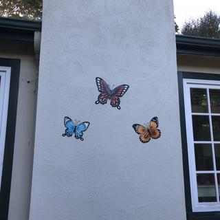 Welcoming visitors to our home in Pacific Grove CA- Butterfly town USA