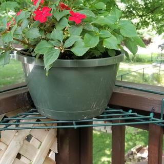 Plant corner deck shelf