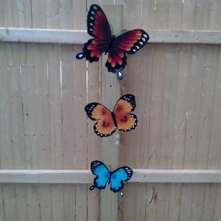 Metal butterflies in a set of 3.  Reasonably priced and looks good too.