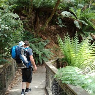 Admiring the natural world.
