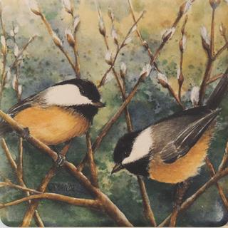 Spring Season: Chickadees & Pussywillows