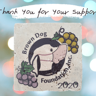 2020 Patron's Wine Dinner for Brown Dog Foundation