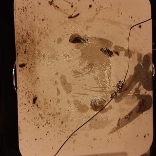Cracked pizza stone :(