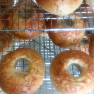 Whole Wheat Bagels are an ease when you are doing large counts with the Lékué Bagel Molds!