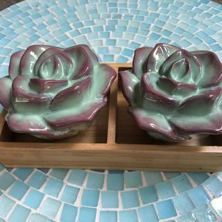 """The color is really eye-catching. And the included """"succulent box"""" makes them doubly special."""