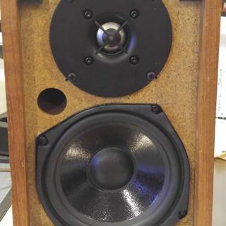 Dayton Audio DC130A-8 5-1/4