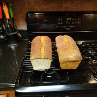Whole wheat bread with a touch of honey