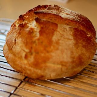 No Knead Bread - Mark Bittman, NY Times - Kamut & ProBiotein