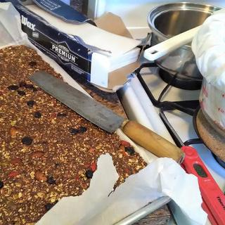 I used a double recipe of the No-Bake Chocolate Power Bars, and family and friends just LOVED them!