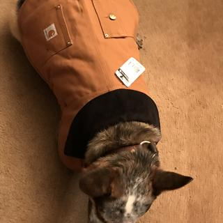 Jax is stylin.