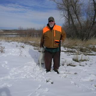 Pheasant hunting in my Carhartt Upland Field Jacket!