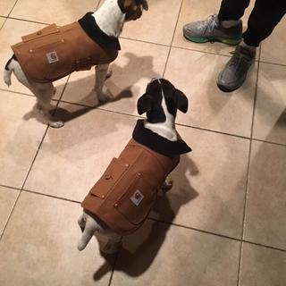 Cooper and Conner in their Carhartt's